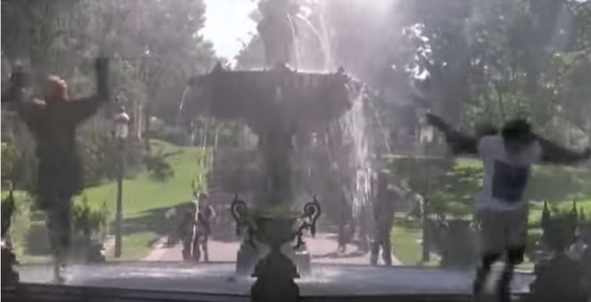 Ducks Filmed Irvine Park
