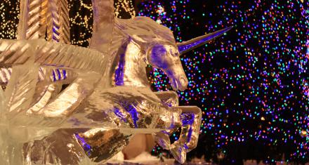 Top 5 Things to Do at Winter Carnival